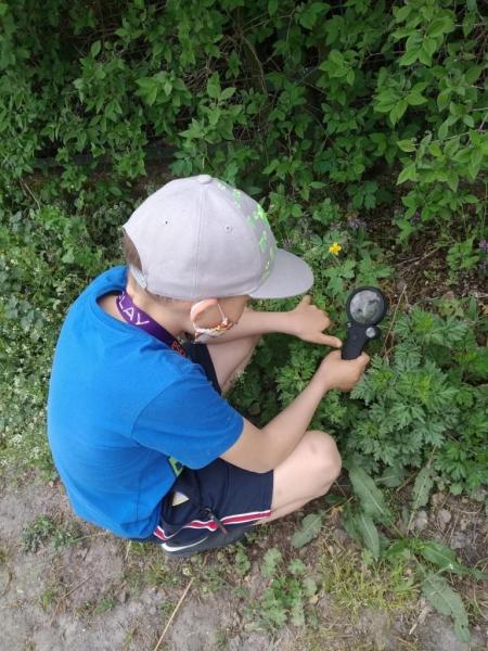 Zajęcia świetlicowe w terenie - obserwacje